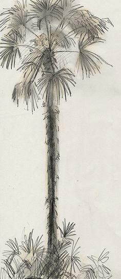 Palm Tree in Venice 2013 by Julian Williams