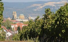 Kevesebb magával ragadó látvány és hangulat van, mint az Egri borvidék ősszel. Tour Guide, Wine Tasting, Budapest, Taj Mahal, Travel Destinations, Thermal Baths, Castle, Journey