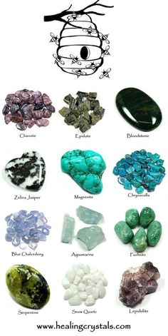 Fuchsite and Bee Animal Totem - Daily Crystal Nugget - Information About Crystals As A Healing Tool Crystal Magic, Crystal Grid, Crystal Healing, Crystals And Gemstones, Stones And Crystals, Animal Spirit Guides, Bee Spirit Animal, Animal Reiki, Animal Totems