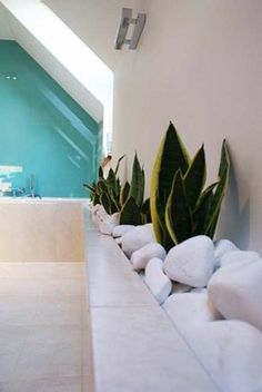 30 Green Ideas for Modern Bathroom Decorating with Plants. How can I use this is my bathrooms????