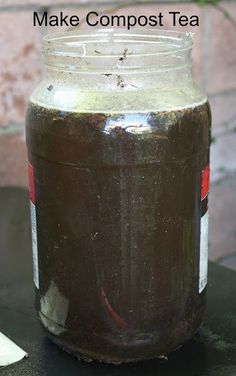 Fertilizante  líquido organico : humus o te de lombriz