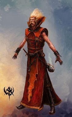 Bright Wizard - Warhammer Online: Age of Reckoning Concept Art Fantasy Wizard, Fantasy Rpg, Medieval Fantasy, Fantasy Artwork, Fantasy Portraits, Fantasy Images, Character Portraits, Character Art, Warhammer Online