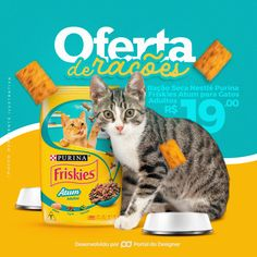 Social Media - PetShop on Behance Social Media Poster, Social Media Design, Pet Shop, Writer Logo, Pet Branding, Sneaker Posters, Hand Lettering Alphabet, Ad Design, Graphic Design
