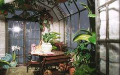 "Lady Jane terrarium ""English Greenhouse."" Interior of the larger size terrarium."
