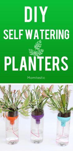 DIY self watering planters (so easy!)