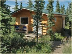 Denali Chamber of Commerce for lodging and other valuable info