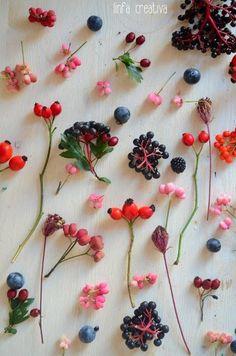 実のある植物をそのまま飾っても素敵だけど、花や葉物と組み合わせて飾っても華やかさがプラスされていいですよね!お花屋さんで購入できるものから、お庭でも育てることができるもの、山や空き地などで見つけることができるものなど様々。ちょっとお散歩する時は、身近に素敵な実のある植物がないか探して、おうちに飾ってみては?