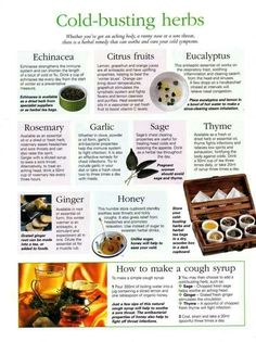 Cold busting herbs