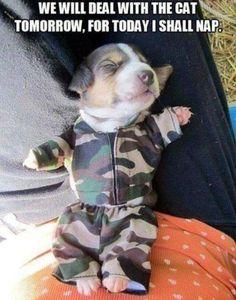 Awwww....cute!