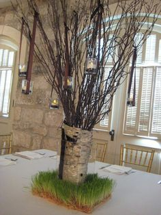 Birch Tree stump with wheat grass and hanging candles