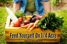 Is it possible to feed yourself on only 1/4 acre? Learn to grow your own fruits and vegetables and make it pretty enough for the front yard. Learn gardening techniques for feeding yourself.