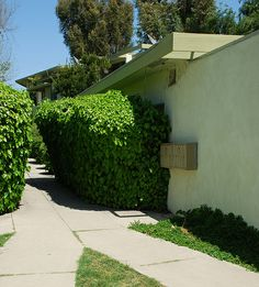 Laurelwood Apartments - Rudolph Schindler - Architect