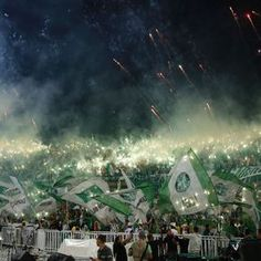 Celebrations in Colombia after Atletico Nacional won the Copa Libertadores final on Wednesday ended in violence, with three fans killed. Ultras Football, Gothic Anime, We Are Young, Football Soccer, Fit, Celebrities, Photography, Club, Beautiful