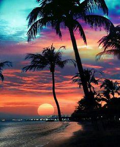 A beautiful sunset. Inspiration for art. Beautiful Nature Wallpaper, Beautiful Sunset, Beautiful Beaches, Beautiful Landscapes, Beautiful Scenery, Summer Wallpaper, Beach Wallpaper, Wallpaper Backgrounds, Tree Wallpaper