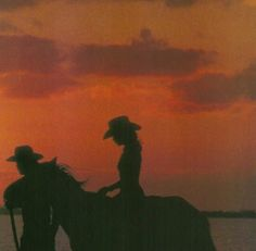 sunset rides with u Fallout New Vegas, Foto Cowgirl, Wall Collage, Wall Art, Orange Aesthetic, Red Dead Redemption, Foto Art, Le Far West, New Wall