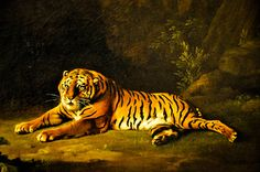 George Stubbs - Tiger, 1771 at the Virginia Museum of Fine Arts (VMFA) Richmond VA