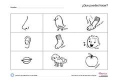 5 senses preschool craft | My 5 Senses | Monarca Language - Preschool to Kindergarten Spanish ...