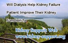 Will dialysis help kidney failure patient improve their kidney function ? As you know, dialysis is a life-saving method for kidney failure patients by eliminating a part of toxins and fluid from body. However, it can not treat kidney failure nor improve kidney function.