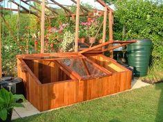 Basic Wooden Box Greenhouse