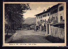 Cartolina Malosco Val di Non Viale al Bosco ANIMATA D165