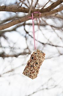 Making Bird Feeders - I'll warn you this was a bit…messy. Your hands will get all peanut buttery and there will be bird seed…everywhere. However, with a little planning (spread out newspapers) the clean up is quick and easy. Crafts For Boys, Cute Crafts, Toddler Crafts, Projects For Kids, Arts And Crafts, Diy Crafts, Toddler Fun, Kids Fun, Craft Activities