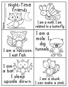 nocturnal animals activities for preschoolers