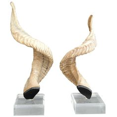 A Pair Of Rams Horns Mounted On Lucite Plinths Canada CIRCA 1980 DIMENSIONS 18 H PRICE