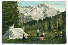 Tent Camping Mt Rainier Washington 1909 by ThePostcardDepot
