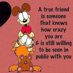 a true friend quotes friendship quote best friends friend bff friendship quote friendship quotes garfirld