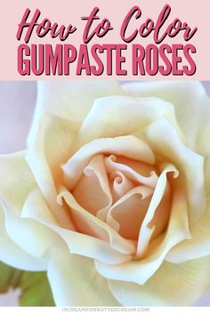Petal dusts add color to your gumpaste roses and it's a great way to make them pop. Using two different colors is a great method for getting a realist look. #gumpasterose #dustinggumpasterose #sugarflower