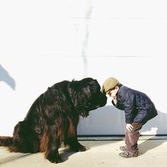 Genuine Love Between a Little Boy and His Big Dog http://www.northwestmommy.com/