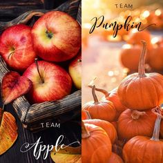 Scentsy, Direct Sales Party, Pampered Chef Party, Interactive Posts, Party Names, Fall Fest, Wax Warmers, Fall Scents, Thirty One Gifts