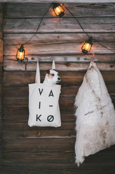 Spell it Out Canvas Bag tote cotton bag by VAI-KØ. Native print, black and white. Ethically made from recycled cotton. Cutest JRT in a bag. Living With Dogs, Cute Canvas, Hiking Dogs, Jack Russells, Jack Russell Terrier, Dog Life, Cotton Tote Bags, Dogs And Puppies, Ms