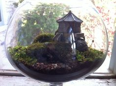 Temple Moss Garden Marimo, Moss Garden, National Treasure, Recycled Glass, Terrarium, Temple, Recycling, Landscape, Nature