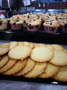 Lactose Free, Gluten Free, Low Fodmap, Sugar Free, Biscuit, Deserts, Muffin, Candy, Breakfast