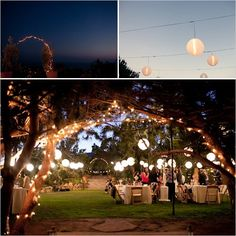 wedding lighting, enchanted garden