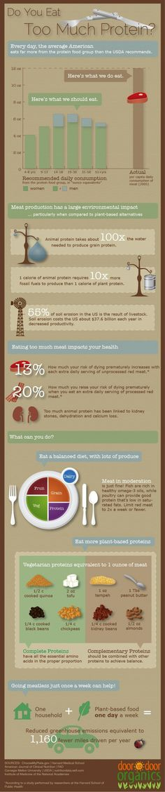 Do You Eat Too Much Protein? - Pinned for the meatless equivalent suggestions at the bottom