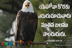Isaiah 40:31 Bible Qoutes, Bible Words, Bible Verses, Jesus Wallpaper, Wallpaper Quotes, Jesus Christ Quotes, Good Morning Friday, Isaiah 40 31, Way To Heaven