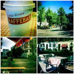 Røde Roses Kaffebar i København N. Lækker mad, god musik og rimelige priser. Og frem for alt er indretningen hyggelig. I sådan en grad at  beboerne omkring Balders Plads nærmest er smeltet sammen med den børnevenlige cafe på Ydre Nørrebro.