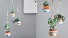 Image result for suspension plantes cordes