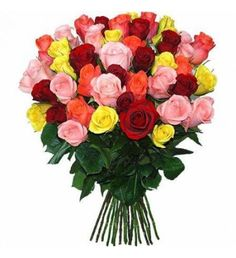 50 Mixed color#Roses great #Gifts for special #Someone #Flowers delivery #Japan