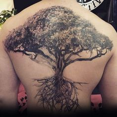 Incredible Detailed Tree With Roots Mens Full Back Tattoo Ideas