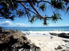 Want to go here!  Wategos Beach, Byron Bay Australia.