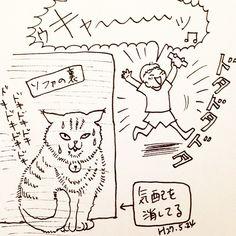 いいね!403件、コメント11件 ― カフカ ヤマモトさん(@cafca_yamamoto)のInstagramアカウント: 「実家のネコは長男が苦手。 #イラスト#絵日記#猫#ネコ#落書き#3歳児#モノクロ」