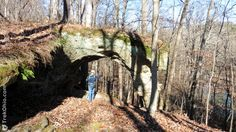 Arch Rock in Vinton Furnace Experimental Forest is a natural arch in Ohio made out of exposed bedrock. It has a span with feet of clearance. Ohio, Arch, Hiking, Natural, Plants, Plant, Wedding Arches, Bow, Arches