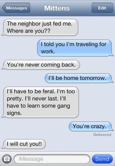 19 Funny Texts from the Cat