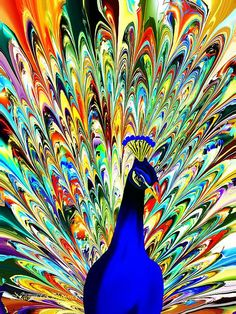 peacock art  peacock painting  feathers   vibrant color art