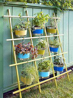 Horta vertical na treliça, dica para seu jardim
