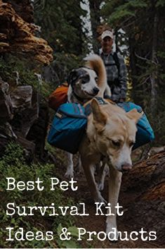In preparation for SHTF, don't forget about prepping a survival kit for your pets at home. Find out what you'll need to keep your pet safe and healthy in crisis, including everything you need in a bug-out bag for your favorite furry companions! Best Pet Survival Kit Ideas & Products http://www.backdoorsurvival.com/best-pet-survival-kit-ideas-products/