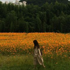I always found myself going back to the field of poppies I always found myself going back to the field of poppies Photographie Portrait Inspiration, The Last Summer, Nature Aesthetic, Aesthetic Style, Poses References, Foto Instagram, Mellow Yellow, Aesthetic Pictures, Mother Nature